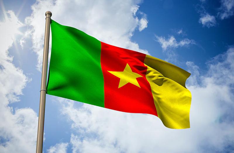 پرچم کامرون که در آن از رنگهای پانآفریقایی سبز، زرد و قرمز استفاده شدهاست