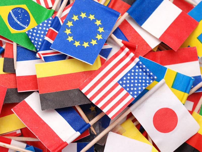 اصطلاحات پرچمشناسی